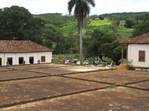 Fazenda de Café - Estado de Sao Paulo - Brasil